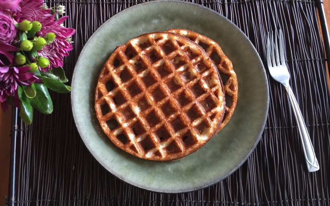 Easy Soaked Oat Waffles